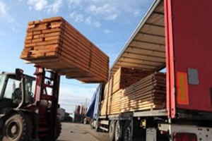 timber yard operative